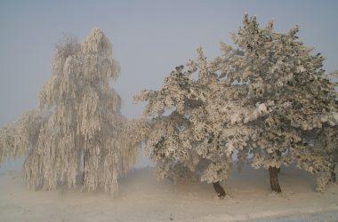 moldova_winter_2010